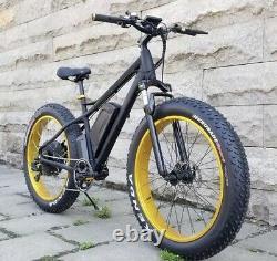 Vélo De Montagne Électrique De Pneu Gras. Moteur Arrière Puissant De Moyeu De 1000w. 17amp 48v E-bike